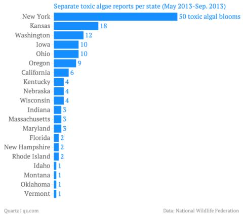 separate-toxic-algae-reports-per-state-may-2013-sep-2013-_chartbuilder